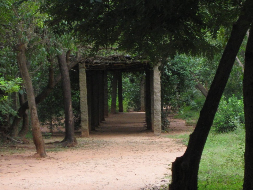 Our Visit to Auroville