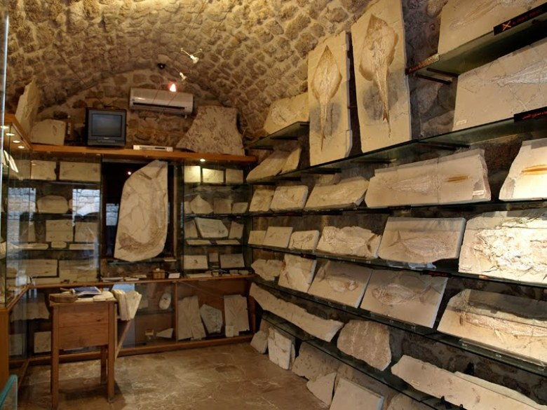 Byblos fossil shop