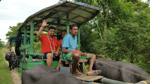 Jaya & Babai on the buffalo-cart