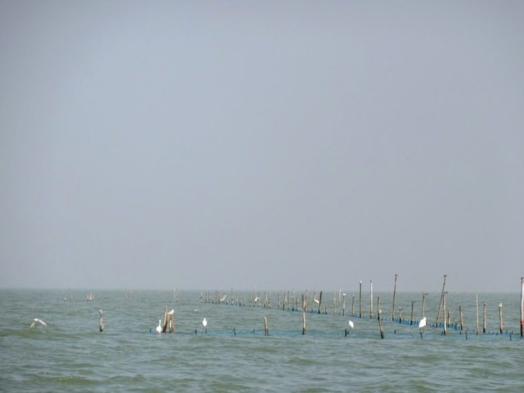 Gopalpur-27003472_Unknown