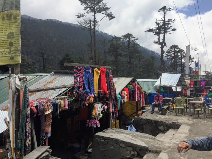 The small local market in Yumthang