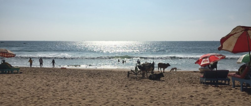 Calangute Beach, Goa