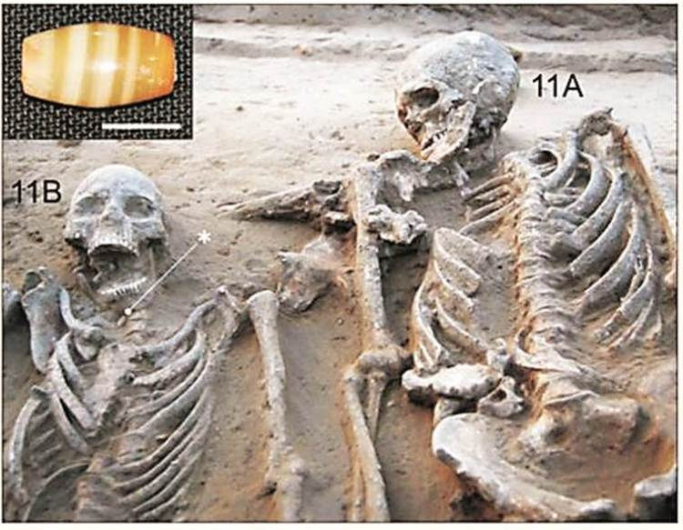 harappan couple in a grave