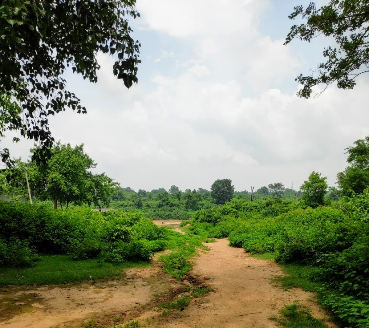 The path to the river Mahane